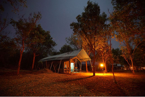 Glamping Wilpattu Nationalpark