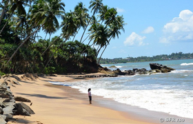 Strand in Negombo